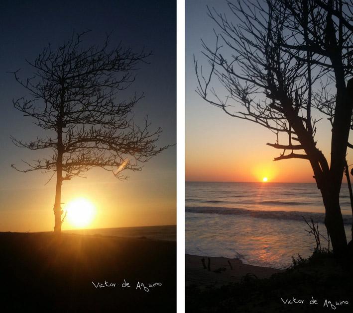 """""""Bom dia meu Paraíso de Atafona!"""", uma seleção das belas fotos"""